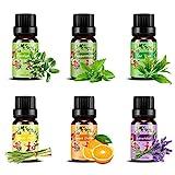 Ätherische Öle Set,6 x 10 ml Aromatherapie Duftöl 100% Pure Ätherische Öle Geschenk für...