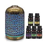 infinitoo 260ml Aroma Diffuser mit 5 Ätherische Öle Set, Luftbefeuchter Metall Aromatherapie...