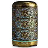 SALKING Aroma Diffuser, 260ml Metall Aromatherapie Diffusor für ätherische Öle, Raumbefeuchter...