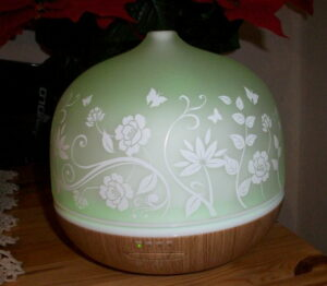 ISELECTOR 500ml Glas Aroma Diffuser