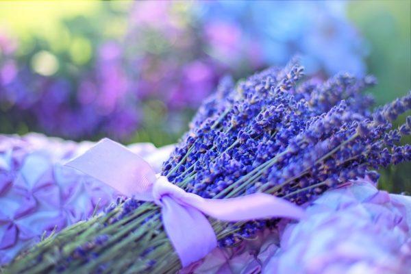 Lavendel hat eine natürlich beruhigende Wirkung.