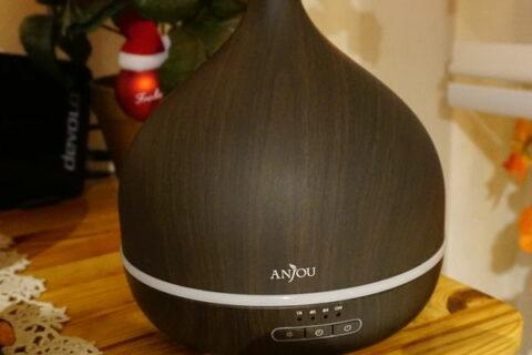 Anjou Aroma Diffusor mit 500 ml ausgeschaltet