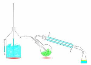 Wasserdampfdestillation schematische Darstellung