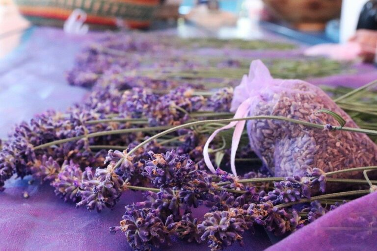Lavendelöl - Eigenschaften, Herstellung und Verwendung