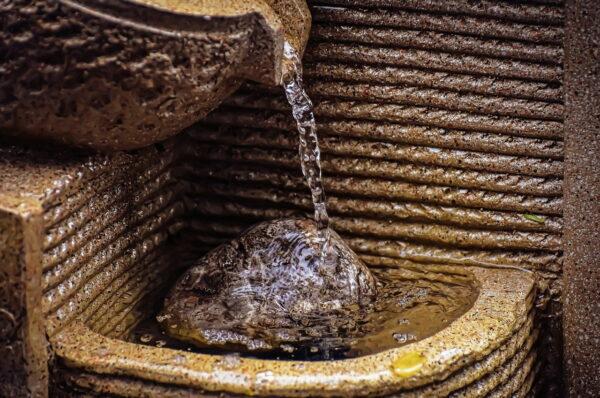 Zimmerbrunnen reinigen – so wird's gemacht